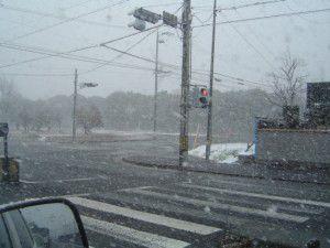 三重県が雪